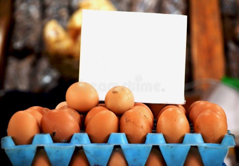Nya ägg på skärm i supermarket royaltyfri foto