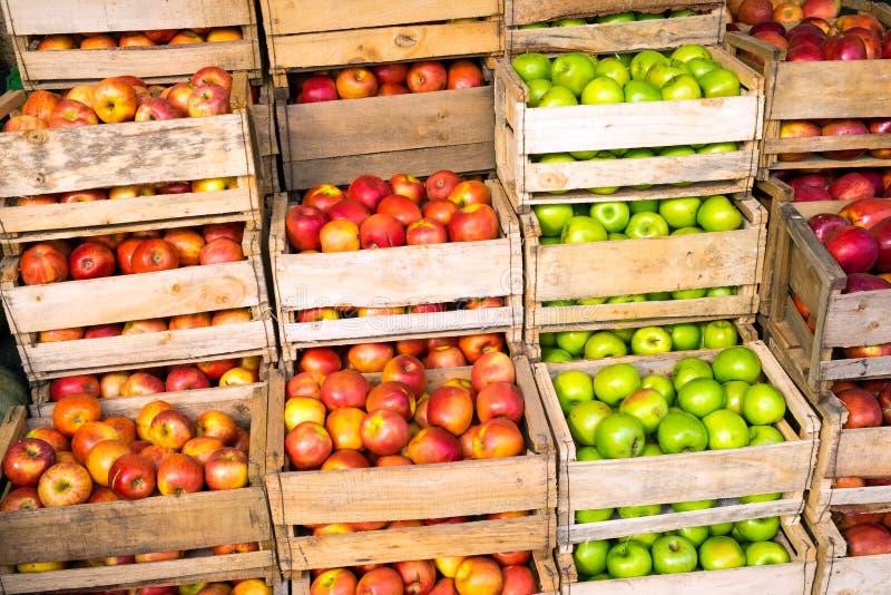 Nya äpplen i till salu träaskar royaltyfria foton