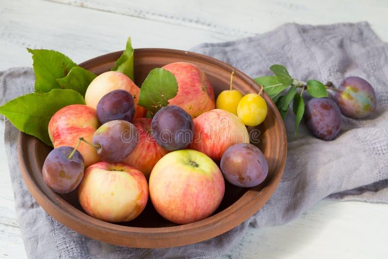 Nya äpplen och plommoner i en lera bowlar arkivbild