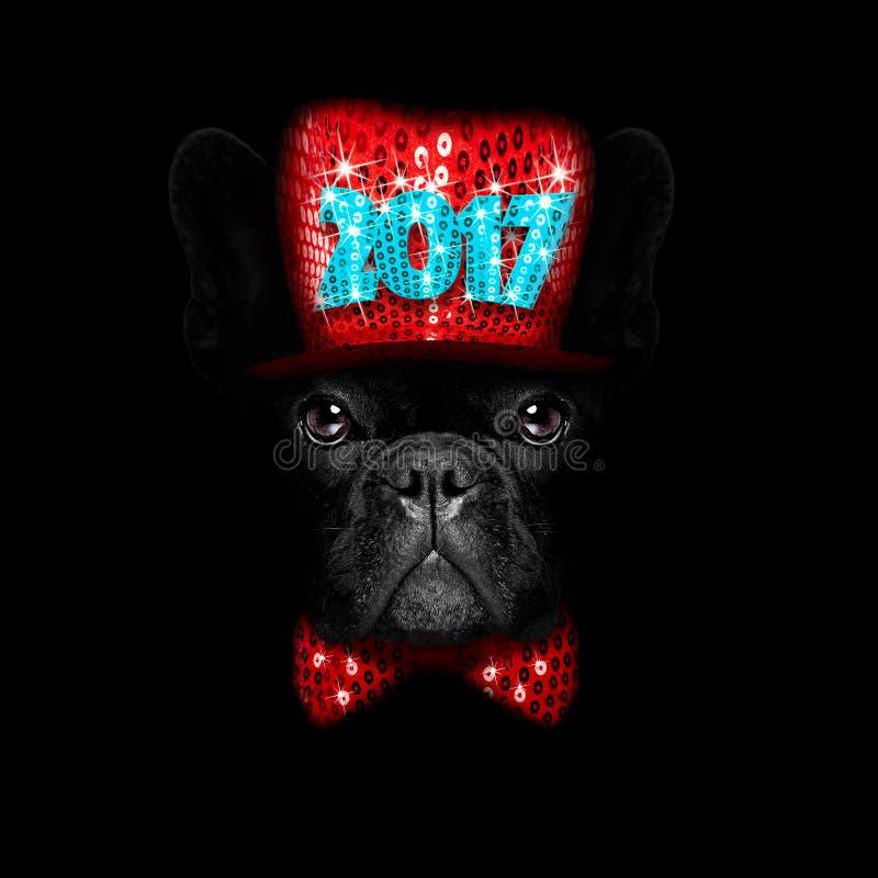 Nya år helgdagsaftonhund på svart backgroud fotografering för bildbyråer