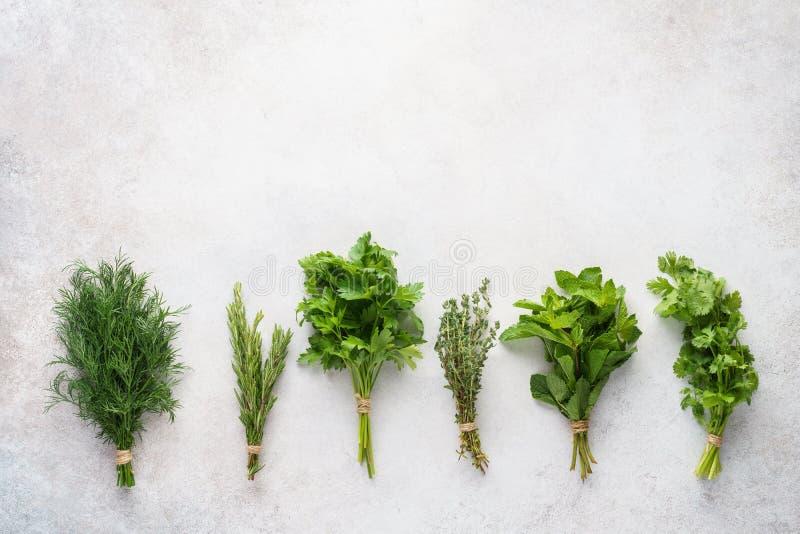 Nya örter på grå bakgrund Olika ingredienser f?r att laga mat royaltyfri fotografi