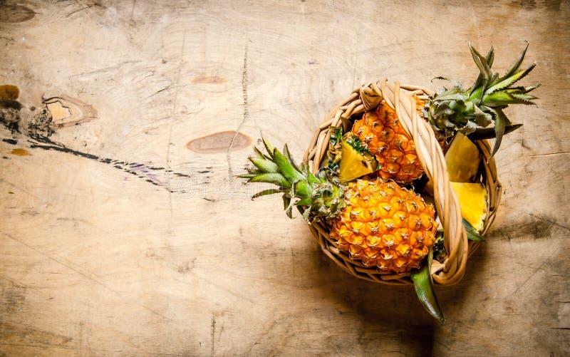 Nya ananors i korgen trägrund tabell för djupfält arkivbild