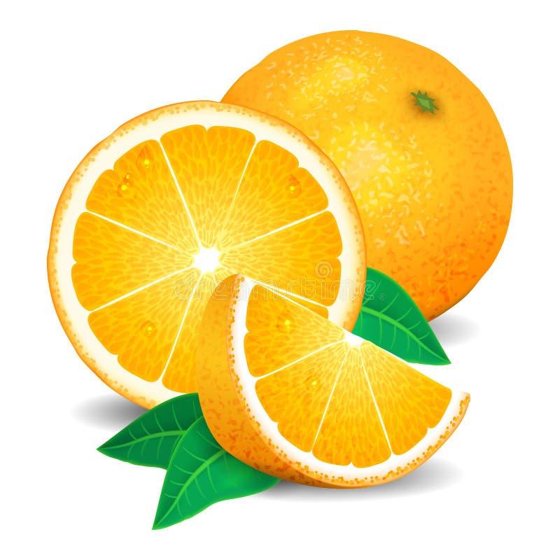 Nya apelsiner frukt, stycken av apelsinen Realistiska apelsiner, vektor vektor illustrationer