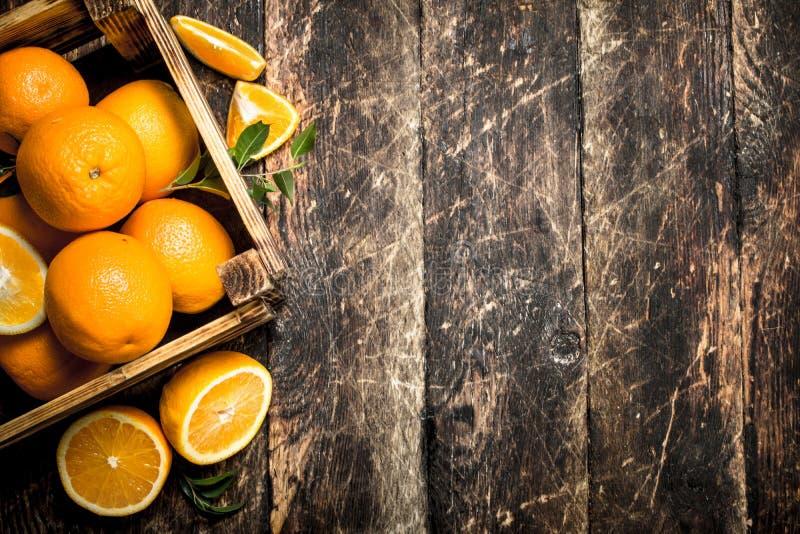 Nya apelsiner i ask royaltyfria bilder