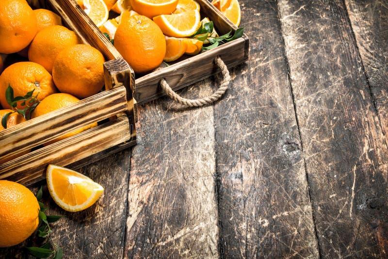 Nya apelsiner i askar royaltyfria bilder