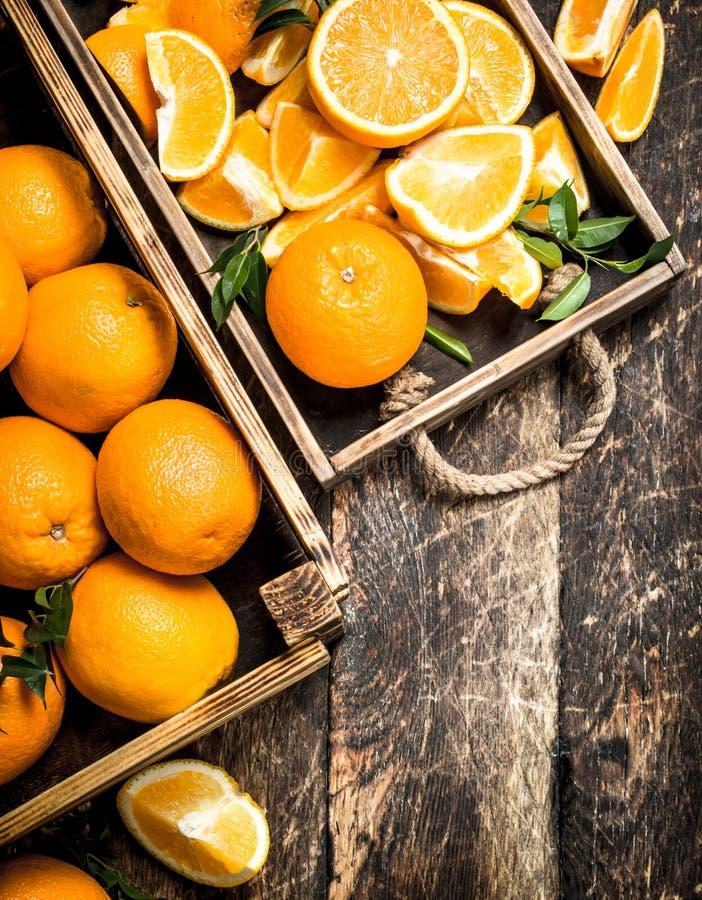Nya apelsiner i askar arkivfoto