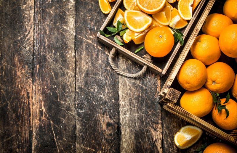 Nya apelsiner i askar fotografering för bildbyråer