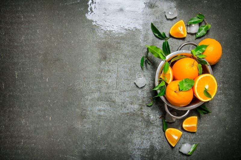 Nya apelsiner i kastrullen arkivfoto