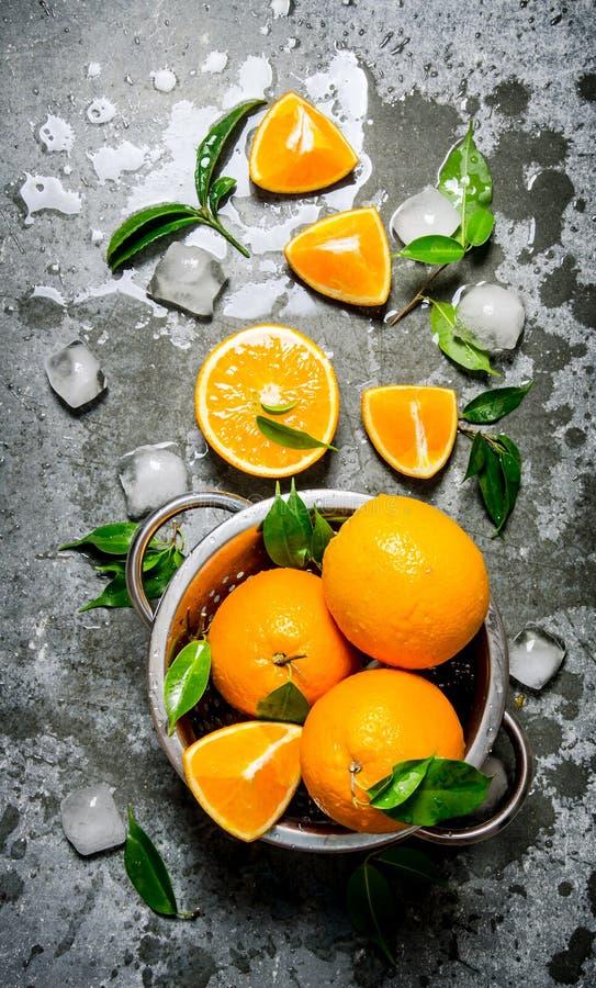 Nya apelsiner i kastrullen fotografering för bildbyråer