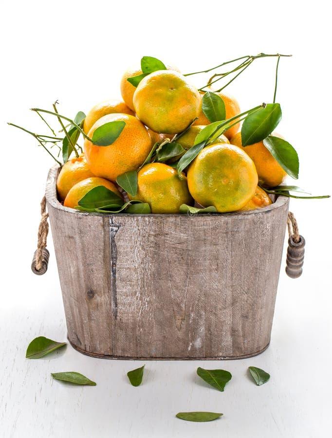 Nya apelsiner i trähink royaltyfri fotografi