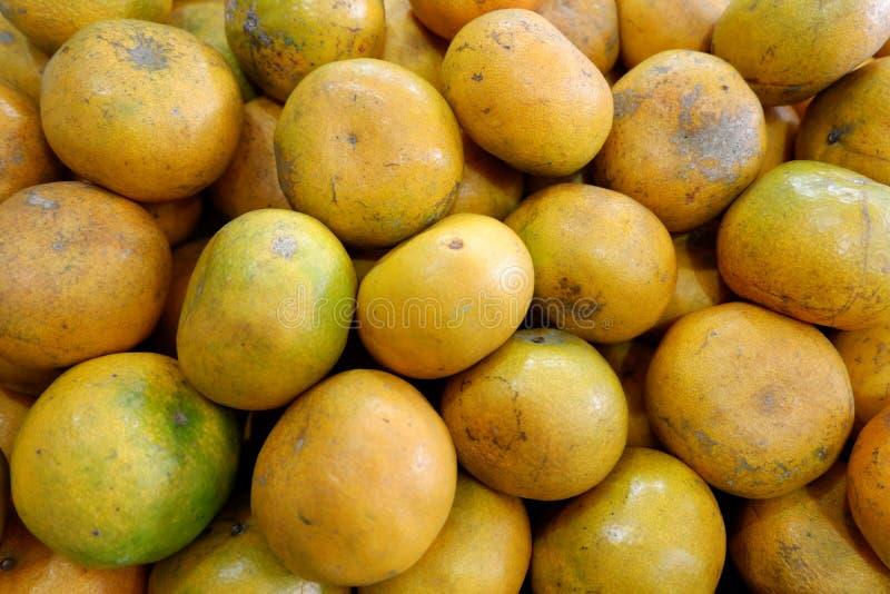 nya apelsiner valde från trädgården arkivfoton