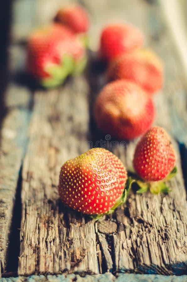 Nya bär av jordgubben på selektiv fokus för gammal trätabell Jordgubbe på naturlig träbakgrund arkivfoton