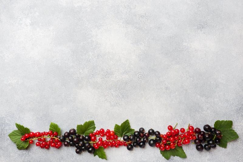 Nya bär av svarta och röda vinbär på en grå tabell med kopieringsutrymme arkivfoton
