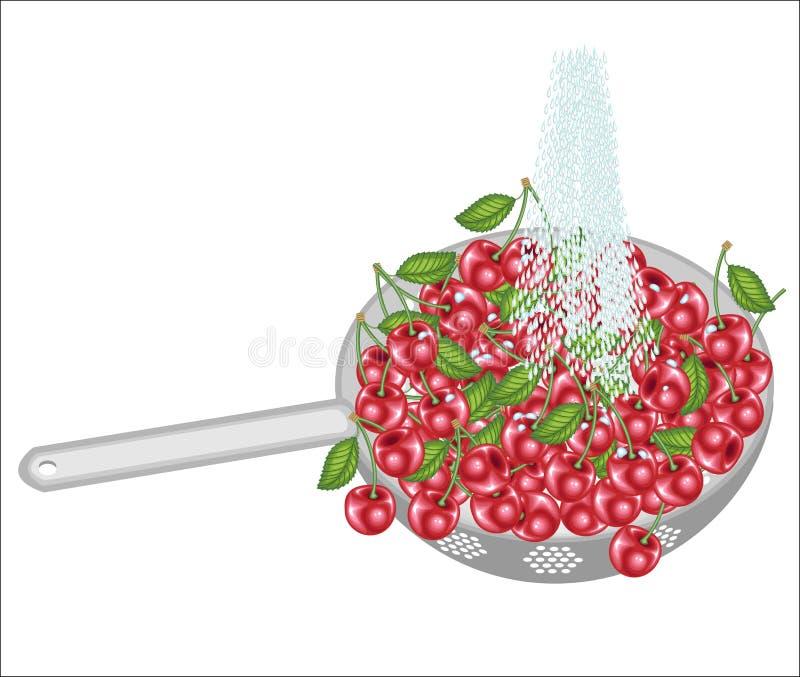 Nya bär i en durkslag Mogna saftiga körsbär tvättas under rinnande vatten Samlade frukter b?r vara ?tit rent vektor royaltyfri illustrationer