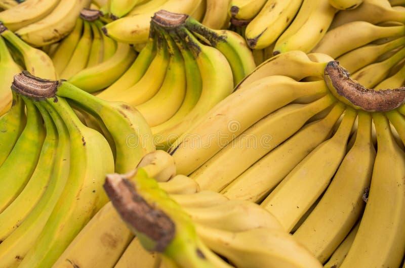 Nya bananer på stadsmarknaden arkivbilder