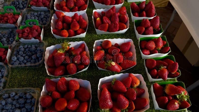 Nya björnbär och jordgubbar, brett sortiment på lokal fruktmarknad arkivfoton