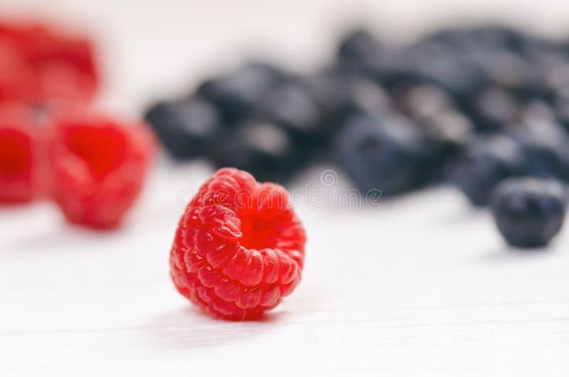 Nya blåbär med mintkaramellen på en trävit tabell naturlig antioxidant sund begreppsmat Organisk superfood royaltyfria foton