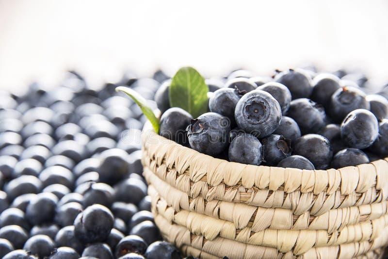 Nya blåbär på bunken royaltyfria foton