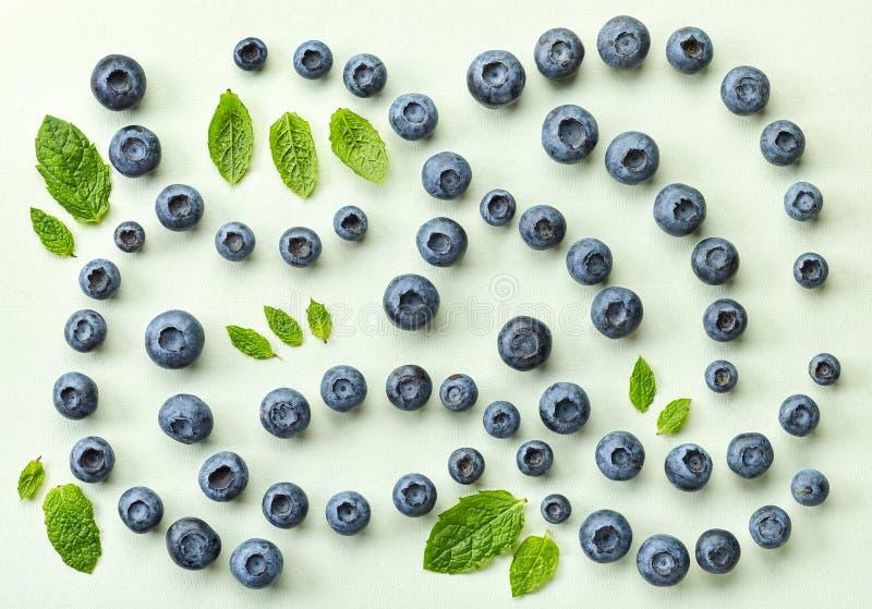 Nya blåbär på ljus - dokument med olika förslagbakgrund royaltyfri fotografi