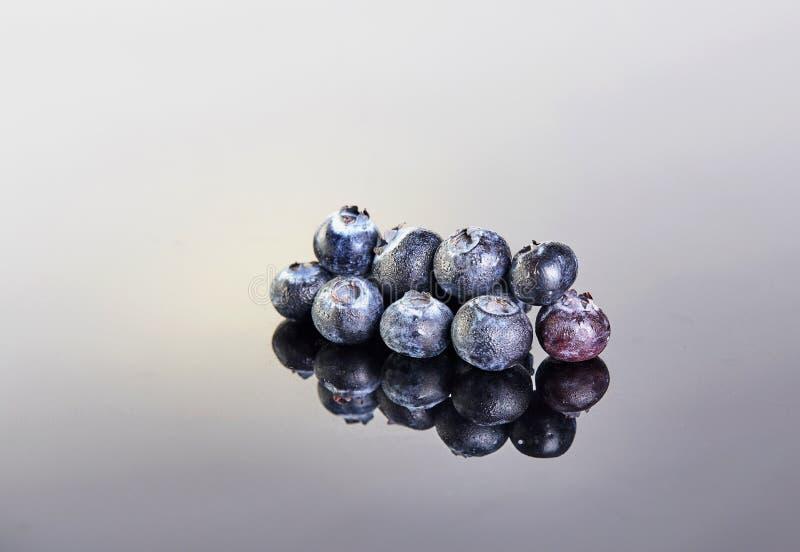 Nya blåbär som täckas i droppar på en grå vit bakgrund arkivfoton