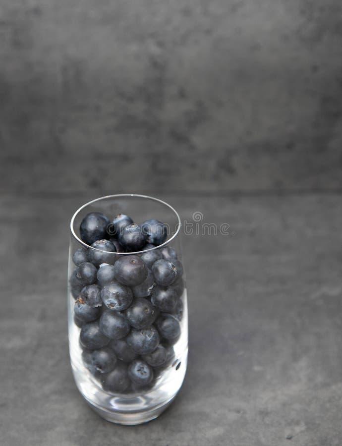 Nya bl?b?r i en glass bunke Läckra blåbär i en exponeringsglaskopp på en grå bakgrund Utrymme f?r text royaltyfri bild