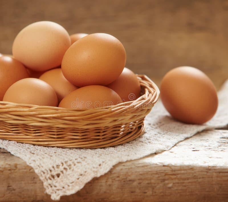 nya bruna ägg royaltyfri bild