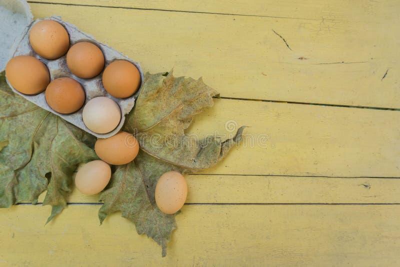 Nya bruna ägg i äggask på den lantliga trätabellen med sidor Begrepp för utrymme för kopia ekologisk och sund mat, royaltyfri foto