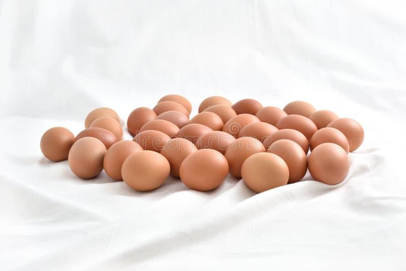 Nya bruna ägg på vit tygbakgrund arkivfoto