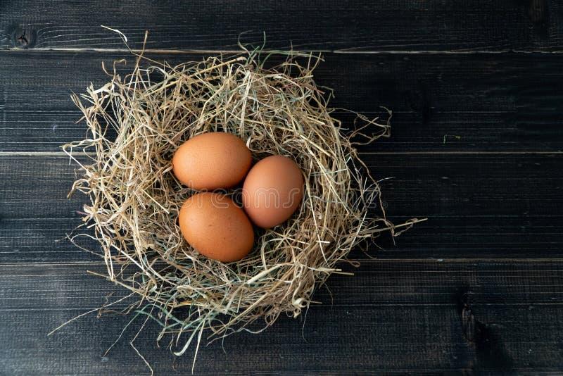 Nya bruna fega ägg i hörede på svart träbakgrund Begrepp av organiska ägg, fritt utrymme för text eller andra beståndsdelar royaltyfri bild