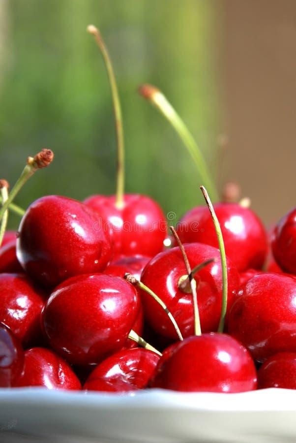 nya Cherry arkivfoto
