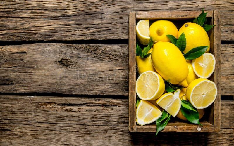 Nya citroner i en gammal ask med sidor royaltyfri fotografi