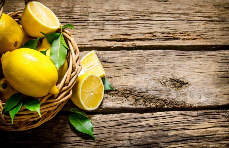 Nya citroner i en korg med sidor fotografering för bildbyråer