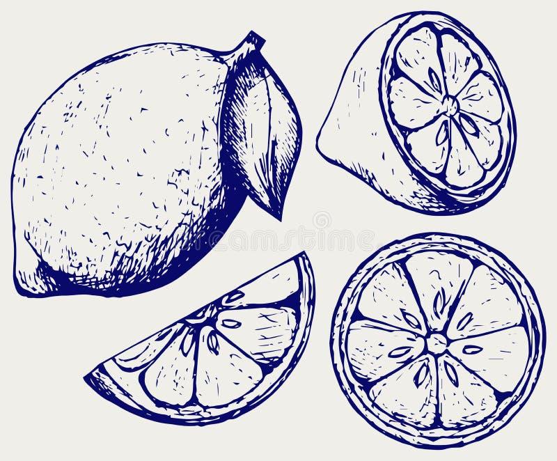 nya citroner Klottra stil stock illustrationer