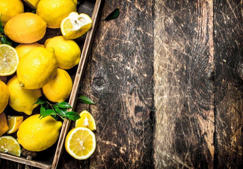 Nya citroner på ett gammalt magasin royaltyfri bild