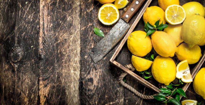 Nya citroner på ett gammalt magasin royaltyfria bilder