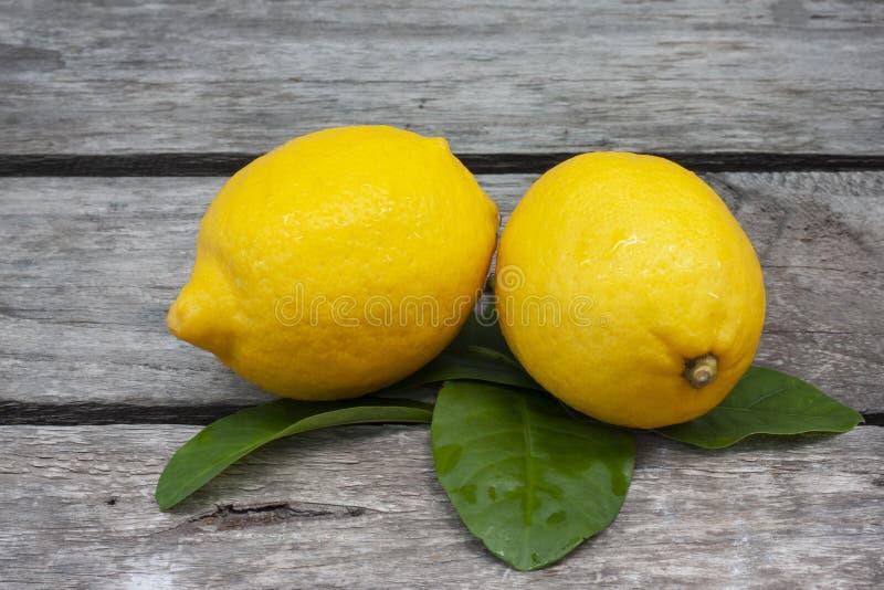 Nya citroner på trätabellbakgrund royaltyfri bild