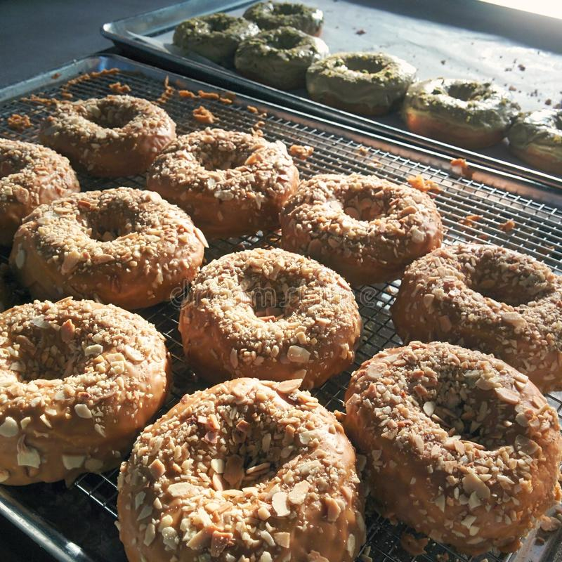 nya donuts royaltyfria bilder