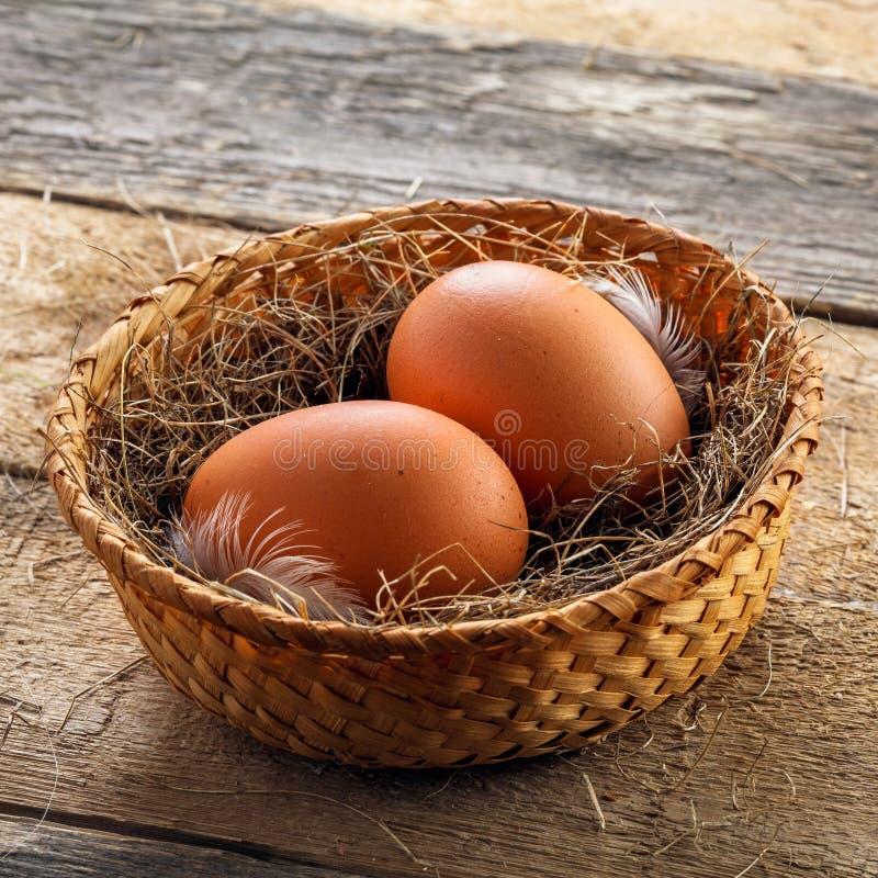 nya fega ägg arkivfoton