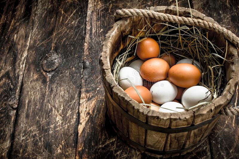 Nya fega ägg i en gammal trähink royaltyfria foton