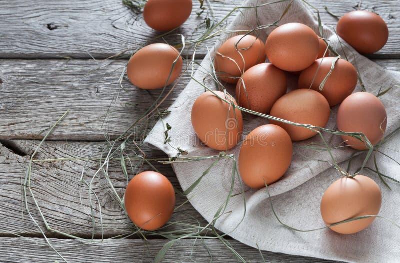 Nya fega bruna ägg på lantligt trä, begrepp för organiskt lantbruk royaltyfria foton