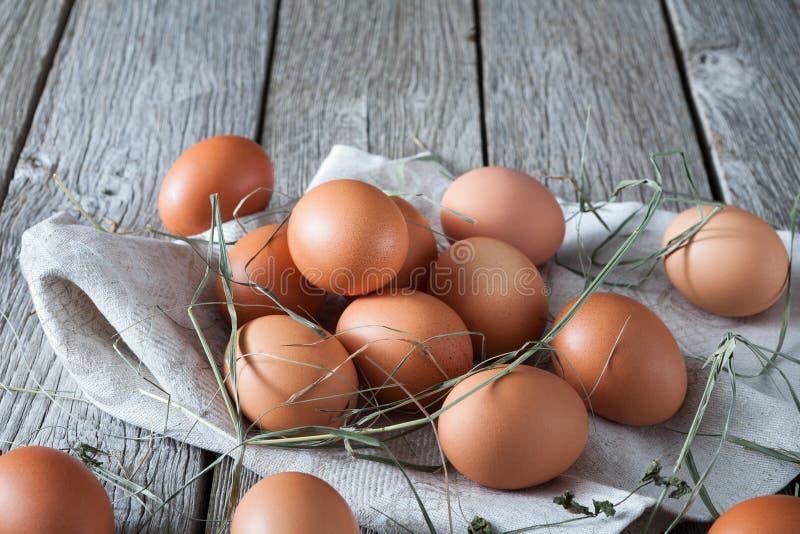 Nya fega bruna ägg på lantligt trä, begrepp för organiskt lantbruk royaltyfri foto