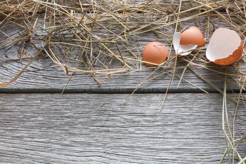 Nya fega bruna ägg på lantligt trä, begreppsbakgrund för organiskt lantbruk royaltyfria foton