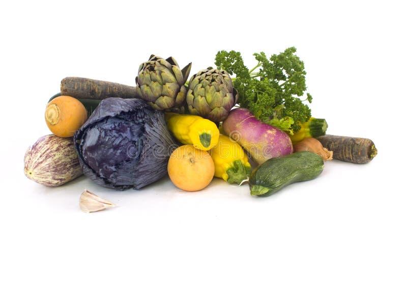nya fjädergrönsaker royaltyfri foto