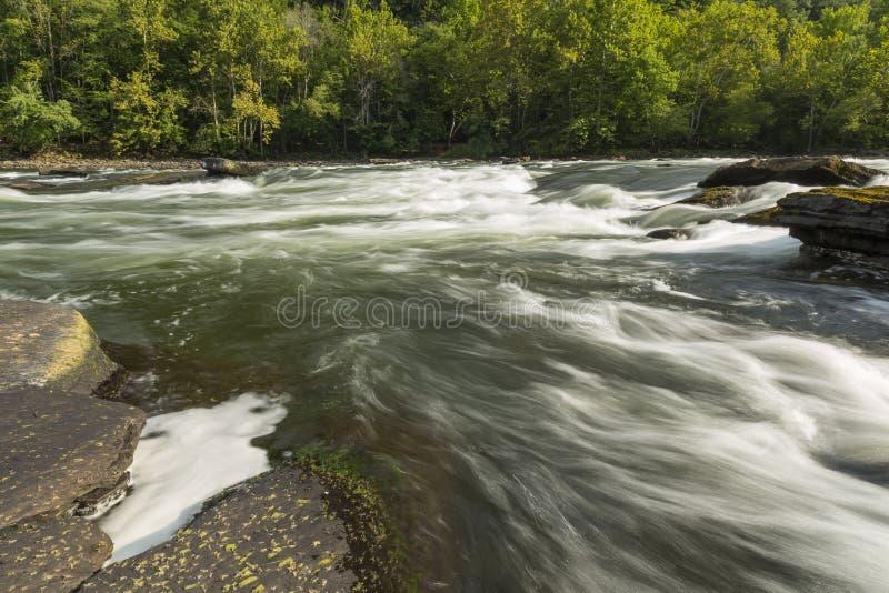Nya flodforsar arkivbild
