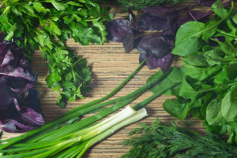 Nya gröna örter på den köksbord-, lök-, persilja-, dill- och basilikacloseupen royaltyfri fotografi