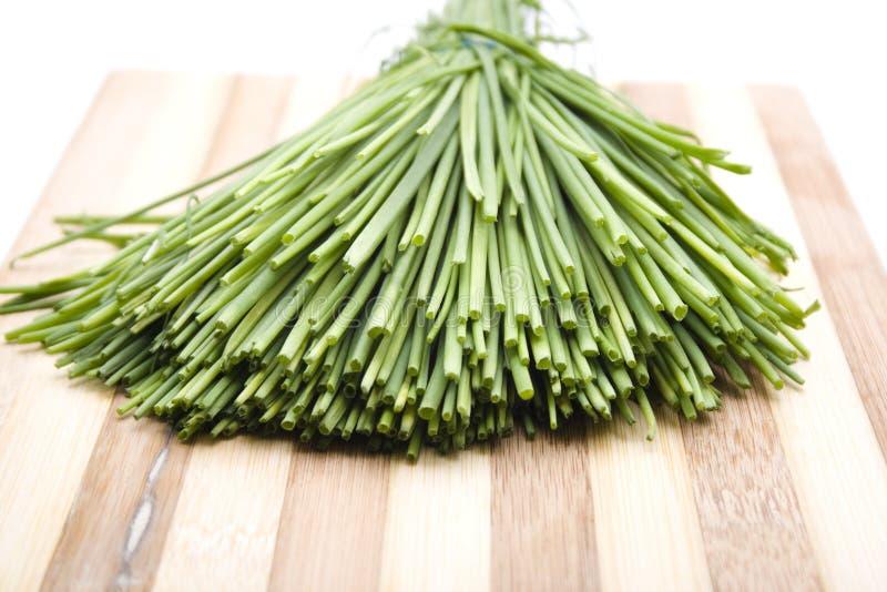 Nya gröna gräslökar royaltyfria foton
