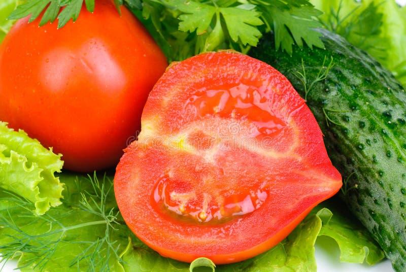 nya grönsaker för bakgrund royaltyfria bilder