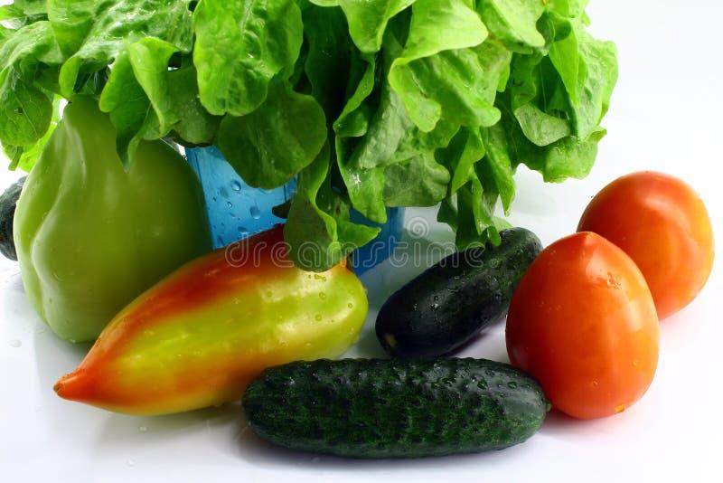 Nya grönsaker från trädgården med vattendroppar på vit bakgrund arkivbild