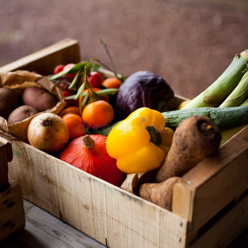 Nya grönsaker i askar royaltyfria bilder