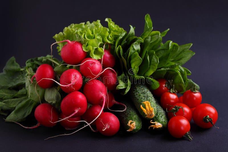 Nya grönsaker och gräsplaner (gurka, rädisa, tomat, grönsallat, spenat) på metallmagasinet arkivfoto